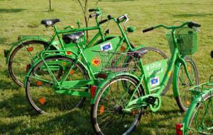Grüne Fahrräder