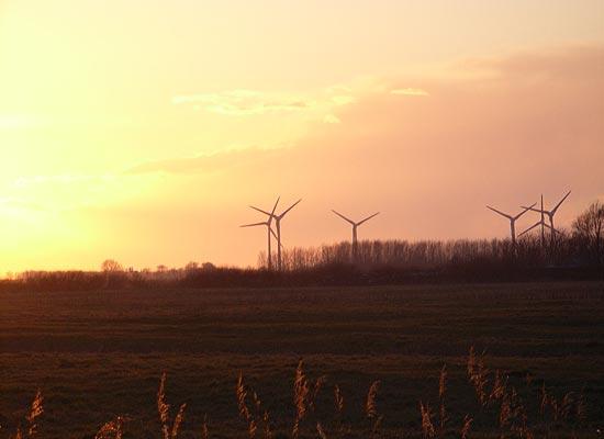 Windräder im Sonnenuntergang in der Krummhörn