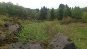 Landschaft Vulkaneifel