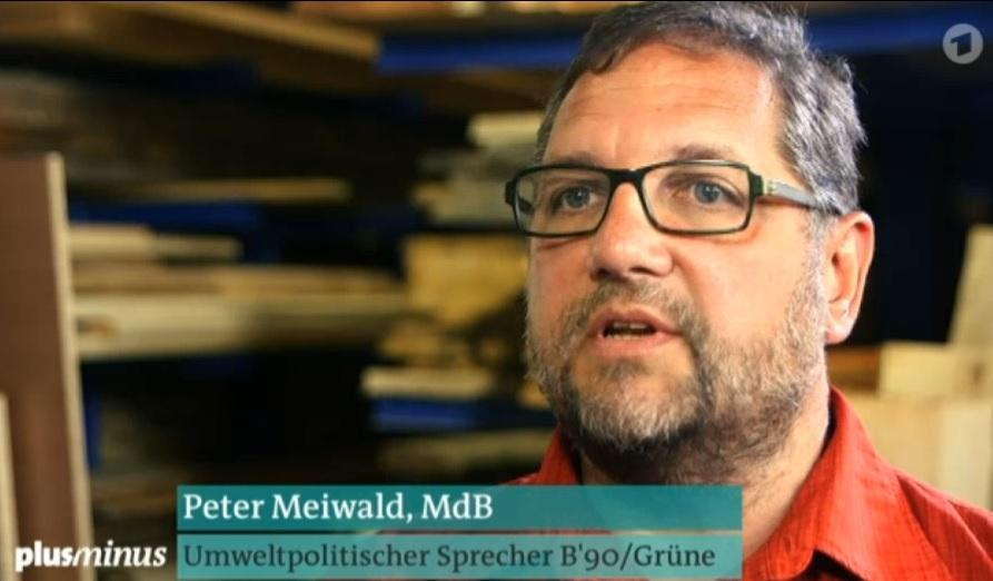 Peter Meiwald bei Plus Minus zu giftigen Holzschutzmitteln in Fertighäusern