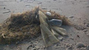 Plastikmüll von einem Quadratmeter Strand