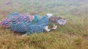 Fischereimüll und anderes