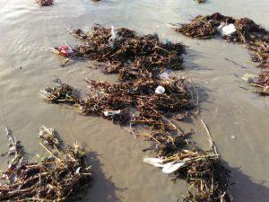Meeresplastik nach der Flut